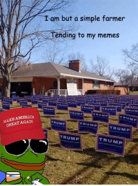 MAKE AMERICA  AGAIN  GREAT I am but a simple farmer  ending to my memes  TRUMP  TRUMP  TRUMP  TRUMP  TRUMP  TRUMP  TRUMP I'm but a simple farmer tending to my memes -shinji