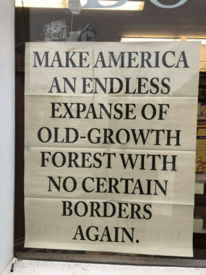 virulentblog:  plaid-flannel: Seen in the window at Gulf of Maine Books in Brunswick, Maine. Photo: Bill Roorbach Except America wasn't an endless expanse of forest with no certain borders. At least not while human beings inhabited it. The idea that native peoples did not cultivate or shape our land and that we had no borders is white propaganda meant to dehumanize and de-legitimize native peoples. This illustration here show Apalachee people using slash and burn methods for agriculture. Fires were set regularly to intention burn down forests and plains. Why would we do this? Well because an unregulated forest isn't that great for people, actually. We set fires to destroy new forest growth and undergrowth, and to remove trees, allowing for easier game hunting, nutrient enriched soil, and better growth rates for crops and herbs we used in food and medicine. Pre-Colonial New England, where my tribe the Abenaki are from, looked more like an extensive meadow or savannah with trees growing in pockets and groves. Enough woodland to support birds, deer, and moose, but not too much to make hunting difficult. We carefully shaped the land around us to suit our needs as a thriving and successful people. Slash and burn agriculture was practiced virtually everywhere in the new world, from the pacific coast to chesapeake bay, from panama to quebec. It was a highly successful way of revitalizing the land and promoting crop growth, as well as preventing massive forest fires that thrive in unregulated forests. Berries were the major source of fruit for my tribe, and we needed to burn the undergrowth so they could grow. That changed when white people invaded, and brought with them disease. In my tribe, up to 9 in 10 people died. 90% of our people perished not from violence starvation, but from disease. Entire villages would be decimated, struck down by small pox. Suddenly, we couldn't care for the land anymore. There weren't enough of us to maintain a vast, carefully structured ecological system like we had for thousands of years. We didn't have the numbers, or strength. So the trees grew back and unregulated. We couldn't set fires anymore, and we couldn't cultivate the land. And white people would make certain we never could again. Timber, after all, was the most important export from New England.  Endless trees and untamed wilderness is a nice fantasy. But it's a very white fantasy, one that erases the history of my people and of my land. One that paints native peoples are merely parasites leeching off the land, not masters of the earth who new the right balance of hunting and agriculture. It robs us of our agency as people, and takes our accomplishments from us. Moreover, it implies that only white people ever discovered the power to shape the world around them, and that mere brown people can't possibly have had anything to do with changing our environment. Don't bring back untamed wilderness. Bring back my fire setters, my tree sappers, my farmers and my fishers. Bring back my people who were here first.  Sources: https://en.wikipedia.org/wiki/Native_American_use_of_fire#Role_of_fire_by_natives https://www.fs.usda.gov/Internet/FSE_DOCUMENTS/fsbdev3_000385.pdf http://www.sidalc.net/repdoc/A11604i/A11604i.pdf For those curious I recommend reading Changes in the Land: Indians, Colonists and the Ecology of New England.https://books.google.com/books/about/Changes_in_the_Land.html?id=AHclmuykdBQCprintsec=frontcoversource=kp_read_button#v=onepageqf=false : MAKE AMERICA  AN ENDLESS  EXPANSE OF  OLD-GROWTH  FOREST WITH  NO CERTAIN  BORDERS  AGAIN virulentblog:  plaid-flannel: Seen in the window at Gulf of Maine Books in Brunswick, Maine. Photo: Bill Roorbach Except America wasn't an endless expanse of forest with no certain borders. At least not while human beings inhabited it. The idea that native peoples did not cultivate or shape our land and that we had no borders is white propaganda meant to dehumanize and de-legitimize native peoples. This illustration here show Apalachee people using slash and burn methods for agriculture. Fires were set regularly to intention burn down forests and plains. Why would we do this? Well because an unregulated forest isn't that great for people, actually. We set fires to destroy new forest growth and undergrowth, and to remove trees, allowing for easier game hunting, nutrient enriched soil, and better growth rates for crops and herbs we used in food and medicine. Pre-Colonial New England, where my tribe the Abenaki are from, looked more like an extensive meadow or savannah with trees growing in pockets and groves. Enough woodland to support birds, deer, and moose, but not too much to make hunting difficult. We carefully shaped the land around us to suit our needs as a thriving and successful people. Slash and burn agriculture was practiced virtually everywhere in the new world, from the pacific coast to chesapeake bay, from panama to quebec. It was a highly successful way of revitalizing the land and promoting crop growth, as well as preventing massive forest fires that thrive in unregulated forests. Berries were the major source of fruit for my tribe, and we needed to burn the undergrowth so they could grow. That changed when white people invaded, and brought with them disease. In my tribe, up to 9 in 10 people died. 90% of our people perished not from violence starvation, but from disease. Entire villages would be decimated, struck down by small pox. Suddenly, we couldn't care for the land anymore. There weren't enough of us to maintain a vast, carefully structured ecological system like we had for thousands of years. We didn't have the numbers, or strength. So the trees grew back and unregulated. We couldn't set fires anymore, and we couldn't cultivate the land. And white people would make certain we never could again. Timber, after all, was the most important export from New England.  Endless trees and untamed wilderness is a nice fantasy. But it's a very white fantasy, one that erases the history of my people and of my land. One that paints native peoples are merely parasites leeching off the land, not masters of the earth who new the right balance of hunting and agriculture. It robs us of our agency as people, and takes our accomplishments from us. Moreover, it implies that only white people ever discovered the power to shape the world around them, and that mere brown people can't possibly have had anything to do with changing our environment. Don't bring back untamed wilderness. Bring back my fire setters, my tree sappers, my farmers and my fishers. Bring back my people who were here first.  Sources: https://en.wikipedia.org/wiki/Native_American_use_of_fire#Role_of_fire_by_natives https://www.fs.usda.gov/Internet/FSE_DOCUMENTS/fsbdev3_000385.pdf http://www.sidalc.net/repdoc/A11604i/A11604i.pdf For those curious I recommend reading Changes in the Land: Indians, Colonists and the Ecology of New England.https://books.google.com/books/about/Changes_in_the_Land.html?id=AHclmuykdBQCprintsec=frontcoversource=kp_read_button#v=onepageqf=false