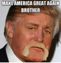 make america great again: MAKE AMERICA GREAT AGAIN  BROTHER