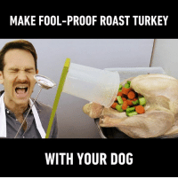 Dank, Roast, and Thanksgiving: MAKE FOOL-PROOF ROAST TURKEY  WITH YOUR DOG Be the very best on Thanksgiving, engineers! 🐶   By Joseph's Machines