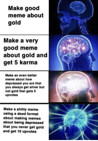 Meme, Memes, and Good: Make good  meme about  gold  Make a very  good meme  about gold and  get 5 karma  Make an even better  meme about how  depressed you are that  you always get silver but  not gold that gets 5  upvotes  Make a shitty meme  using a dead format  about making memes  about being depressed  that you never get gold  and get 10 upvotes