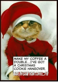 Cookies, Memes, and Hangover: MAKE MY COFFEE A  DOUBLE...I'VE GOT  A CHRISTMAS  COOKIE HANGOVER. Woke up about an hour ago..but I needed coffee and quiet...I was in a cookie coma..ugh never eating cookies again..well maybe just one..lol