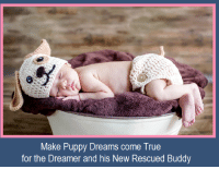 ". Make Doggy Dreams Come True !  For 2 & 4 Legged Dreamers !  Rescue a ""Buddy"" this Season of Giving = Free GOO !  Buddy System = They take Care of You & You take Care of Them !  This Season of Giving, RESCUE Your New Canine Buddy / Purchase a GOO Product and Healthy GOO will Include a Free GOO for your New Buddy !  Healthy GOO wants to Help You > Help Your New Buddy > Begin the LifeTime Journey to Good Health & Happiness !  We ALL need a Buddy !  Help our Rescue Animal's find ""You"" …. their New Buddy .  ""Click"" to Learn More about GOO's Buddy System Promotion !  http://2gzm2.r.ca.d.sendibm2.com/bzbd8in7ygbf.html  Happy Season of Giving !  Your Friends @ Healthy GOO  www.HealthyGOO.com www.DoggyGOO.com: Make Puppy Dreams come True  for the Dreamer and his New Rescued Buddy . Make Doggy Dreams Come True !  For 2 & 4 Legged Dreamers !  Rescue a ""Buddy"" this Season of Giving = Free GOO !  Buddy System = They take Care of You & You take Care of Them !  This Season of Giving, RESCUE Your New Canine Buddy / Purchase a GOO Product and Healthy GOO will Include a Free GOO for your New Buddy !  Healthy GOO wants to Help You > Help Your New Buddy > Begin the LifeTime Journey to Good Health & Happiness !  We ALL need a Buddy !  Help our Rescue Animal's find ""You"" …. their New Buddy .  ""Click"" to Learn More about GOO's Buddy System Promotion !  http://2gzm2.r.ca.d.sendibm2.com/bzbd8in7ygbf.html  Happy Season of Giving !  Your Friends @ Healthy GOO  www.HealthyGOO.com www.DoggyGOO.com"