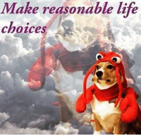 Life, Make, and  Choices: Make reasonable life  choices Memesz