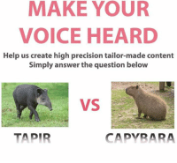Create Meme: MAKE YOUR  VOICE HEARD  Help us create high precision tailor-made content  Simply answer the question below  CAPYBARA  TAPIR