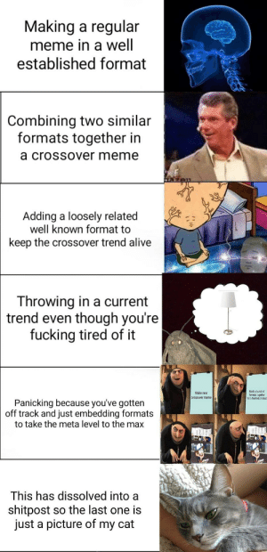 Here.: Making a regular  meme in a well  established format  Combining two similar  formats together in  a crossOVer meme  Adding a loosely related  well known format to  keep the crossover trend alive  Throwing in a current  trend  even tnough youre  fucking tired of it  Make new  crossover meme  Mash a bunch of  ormats together  for a finished product  Panicking because you've gottern  off track and just embedding formats  to take the meta level to the max  This has dissolved into a  shitpost so the last one is  just a picture of my cat Here.