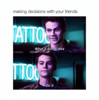 Dumb, Friends, and Teen Wolf: making decisions with your friends  ATTO  What a dumb idea  Do it teen wolf