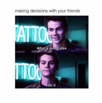 Dumb, Friends, and Girl Memes: making decisions with your friends  ATTO  What a dumb idea  Do it Dylan though