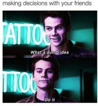Dumb, Memes, and Decisions: making decisions with your friends  What a dumb idea  Do it True af