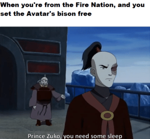 Making memes of every line in ATLA until the live-action series is on Netflix No.93: Making memes of every line in ATLA until the live-action series is on Netflix No.93