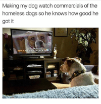 Haven't heard homeboy barked ever since: Making my dog watch commercials of the  homeless dogs so he knows how good he  got it  Join ASPCA org  ASPCA 1-888-514-4443 Haven't heard homeboy barked ever since