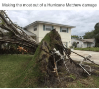 Memes, Hurricane, and 🤖: Making the most out of a Hurricane Matthew damage