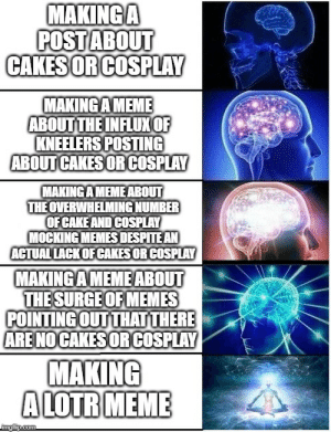 Meme, Memes, and Cosplay: MAKINGA  POST ABOUT  CAKESOR COSPLAY  MAKINGAMEME  ABOUT THE INFLUXOF  KNEELERS POSTING  ABOUT CAKES OR COSPLAY  MAKING A MEMEABOUT  THE OVERWHELMING NUMBER  OFCAKE AND COSPLAY  MOCKING MEMESDESPITE AN  ACTUAL LACKOF CAKES OR COSPLAY  MAKING AMEMEABOUT  THE SURGE OF MEMES  POINTING OUT THAT THERE  ARENO CAKES OR COSPLAY  MAKING  A LOTR MEME  imgflip.com My feelings about the recent memes