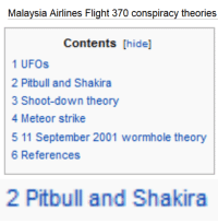 flight 370: Malaysia Airlines Flight 370 conspiracy theories   Contents [hide]  1 UFOs  2 Pitbull and Shakira  3 Shoot-down theory  4 Meteor strike  5 11 September 2001 wormhole theory  6 References   2 Pitbull and Shakira
