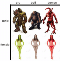 Accurate.: male  female  Orc  troll  demon Accurate.
