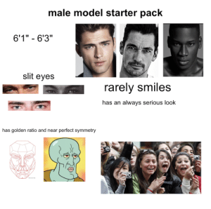 "Male model starter pack: male model starter pack  6'1"" - 6'3""  slit eyes  rarely smiles  has an always serious look  has golden ratio and near perfect symmetry Male model starter pack"