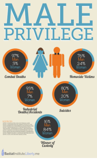Butthurt, Tumblr, and Death: MALE  PRIVILEGE  24%  Combat Deaths  Homocide Victims  20%  Women  Industrial  Suicides  Deaths Ticcidents  Women  Winner  of  Custody  Bastiatlnstitute Liberty me The feminists butthurt in the comments....
