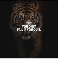 Winners never quit and quitters NEVER win. Which one are you? Comment below 👇 - winner quitter success millionairementor: MALIONAIRE MENTOR  YOU ONLY  FAIL IF YOU QUIT. Winners never quit and quitters NEVER win. Which one are you? Comment below 👇 - winner quitter success millionairementor