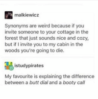 cottage: malkiewicz  Synonyms are weird because if you  invite someone to your cottage in the  forest that just sounds nice and cozy,  but if invite you to my cabin in the  woods you're going to die.  istudypirates  My favourite is explaining the difference  between a butt dial and a booty call