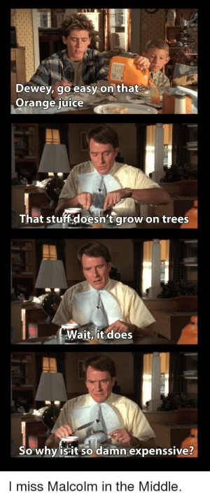 Classic by mint_syrupp MORE MEMES: MALL  Dewey, go easy on that  Orange juice  That stuff.doesn't grow  on trees  Wait, it does  So why isit so damn expenssive?  I miss Malcolm in the Middle Classic by mint_syrupp MORE MEMES