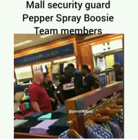 boosie's team members were pepper sprayed in a mississippi mall. Incident he claims was racist. Watch his explanation next swipe: Mall security guard  Pepper Spray Boosie  Team members  mW boosie's team members were pepper sprayed in a mississippi mall. Incident he claims was racist. Watch his explanation next swipe