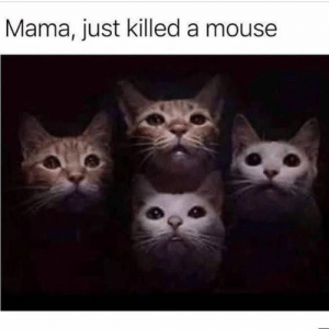 Put a claw against his head: Mama, just killed a mouse Put a claw against his head