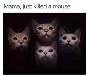 Dank, Head, and Memes: Mama, just killed a mouse Put my mouth against his head, closed my jaw and now his dead. by theboringlifestyle MORE MEMES