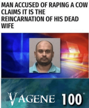Anaconda, Wife, and Reincarnation: MAN ACCUSED OF RAPING A COW  CLAIMS IT IS THE  REINCARNATION OF HIS DEAD  WIFE  VAGENE 100 Makes sense to me