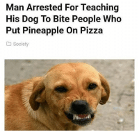Snapchat: dankmemesgang 👻: Man Arrested For Teaching  His Dog To Bite People Who  Put Pineapple On Pizza  a Society Snapchat: dankmemesgang 👻