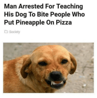Tag someone that should be bitten.. @openlygayanimals is a must follow.: Man Arrested For Teaching  His Dog To Bite People Who  Put Pineapple On Pizza  society Tag someone that should be bitten.. @openlygayanimals is a must follow.