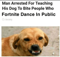 Dog: Man Arrested For Teaching  His Dog To Bite People Who  Fortnite Dance In Public  society