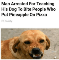 Pizza, Best, and Pineapple: Man Arrested For Teaching  His Dog To Bite People Who  Put Pineapple On Pizza  Society @animalsmeettheinternet is probably our best page on IG