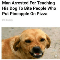 Pizza, Good, and Pineapple: Man Arrested For Teaching  His Dog To Bite People Who  Put Pineapple On Pizza  Society good boi