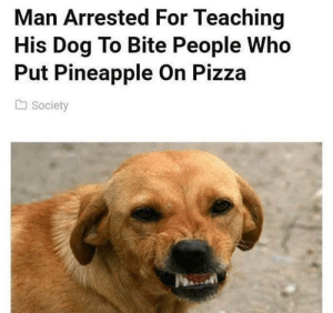 The hero we need. by Jumpingonacloud FOLLOW HERE 4 MORE MEMES.: Man Arrested For Teaching  His Dog To Bite People Who  Put Pineapple On Pizza  a Society The hero we need. by Jumpingonacloud FOLLOW HERE 4 MORE MEMES.