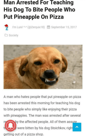 pizza shop: Man Arrested For Teaching  His Dog To Bite People Who  Put Pineapple On Pizza  I'm Luis! A (@Zerquix18)  September 15, 2017  Society  A man who hates people that put pineapple on pizza  has been arrested this morning for teaching his dog  to bite people who simply like enjoying their pizza  with pineapples. The man was arrested after several  by the affected people. All of them assure  re  were bitten by his dog Stoichkov, right  t  getting out of a pizza shop.