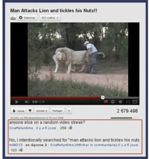 "Lion, Video, and Random: Man Attacks Lion and tickles his Nuts!!  sabonner  821 vioios -  ime Ajouter Partager  2 679 498  anyone else on a random video streak?  Giraffefuntime il y a 6 jouts 259  No, i intentionally searched for ""man attacks lion and tickles his nuts  mN313 en réponse à:Giraffefuntime (Afficher le commentaire) il y a 5 jours  123 me🦁irl"