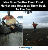This man is the true definition of a hero 🙌💪💙: Man Buys Turtles From Food  Market And Releases Them Back  To The Sea  Talent  Explore This man is the true definition of a hero 🙌💪💙