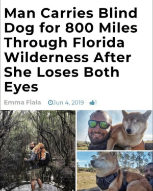 Florida, Wholesome, and Dog: Man Carries Blind  Dog for 800 Miles  Through Florida  Wilderness After  She Loses Both  Eyes  OJun 4, 2019  Emma Fiala Most wholesome I've seen all day