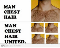 9gag, Dank, and Hair: MAN  CHEST  HAIR  MAN  CHEST  HAIR  UNITED.  9GAG  COM/GAG 4670086 Man chest hair united