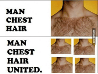 Dank, 🤖, and Ref: MAN  CHEST  HAIR  MAN  CHEST  HAIR  UNITED  VIAGGAG.COM I can already imagine Man Chest Hair City... 😳 http://9gag.com/gag/adYgm6j?ref=fbp