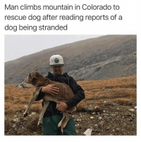 Bad, Funny, and News: Man climbs mountain in Colorado to  rescue dog after reading reports of a  dog being stranded There's so much bad news out there, and you won't find any of it on @tanksgoodnews Follow immediately for goodnewsonly