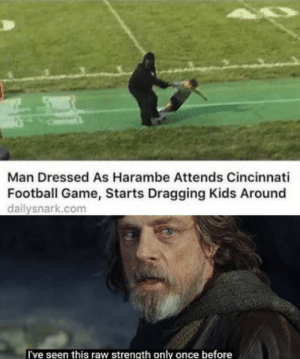 Here we go again: Man Dressed As Harambe Attends Cincinnati  Football Game, Starts Dragging Kids Around  dailysnark.com  I've seen this raw strength only once before Here we go again