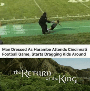 Our savior has sent someone for avenging his death: Man Dressed As Harambe Attends Cincinnati  Football Game, Starts Dragging Kids Around  The RETURN  of the KinG Our savior has sent someone for avenging his death