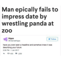 Man epically fails to  impress date by  wrestling panda at  ZOO  Hippo  Follow  @Internet Hippo  have you ever seen a headline and somehow knew it was  describing your future  5:06 PM 1 Jan 2017  t 433 1.200 { funnytumblr textposts funnytextpost tumblr funnytumblrpost tumblrfunny followme tumblrfunny textpost tumblrpost haha}