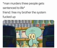 """Life, Memes, and Regret: """"man murders three people gets  sentenced to life*  friend: free my brother the system  fucked up I may regret not watermarking this"""