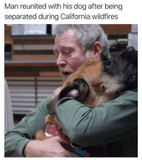 Dogs, Family, and California: Man reunited with his dog after being  separated during California wildfires dogs are practically family via /r/wholesomememes https://ift.tt/2zvxyyH