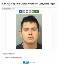 sherry: Man Running from Cops Stops to Pet Cats, Goes to Jail  Police say the Florida man led them on quite a chase.  By SHERRI LONON  (Patch Staff  September 3, 2014  P  tastefu  ffensive  Priorities. (via thosewholeft)  t f Postize