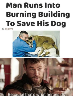 A true hero: Man Runs Into  Burning Building  To Save His Dog  by dogtime  Because that's what heroes do A true hero