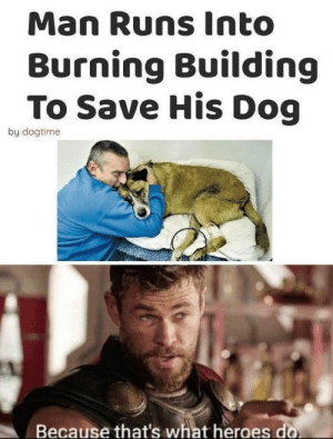 What a hero by Pringles__ MORE MEMES: Man Runs Into  Burning Building  To Save His Dog  by dogtime  Because that's what heroes do What a hero by Pringles__ MORE MEMES
