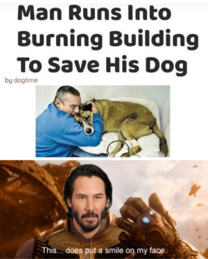 I like turtles: Man Runs Into  Burning Building  To Save His Dog  by dogtime  This... does put a smile on my face. I like turtles